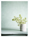 White Bouquet Wall Decal