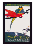 The London Zoo: The Macaw Wall Decal by Van Jones