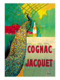 Cognac Jacquet Wall Decal by Camille Bouchet