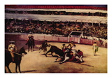 Bullfight Wall Decal by douard Manet