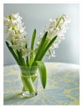 White Carnegie Hyacinth Wall Decal