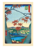 The Maple Trees Wall Decal by Ando Hiroshige