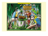 A Company of Parrots Wall Decal by Richard Kelly