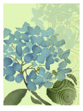 Hydrangea in Blue Wall Decal