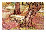 The Stone Bench In The Garden of Saint-Paul Hospital Wall Decal by Vincent van Gogh