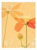 Poppies in Orange Wall Decal