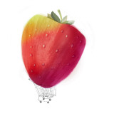 Strawberry Giant Wall Decal