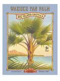 ワククの団扇椰子 ウォールステッカー : カーン・エリクソン