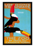 The London Zoo: South American Toucans Wall Decal by Tony Castle