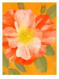 Wild Orange Rose Wall Decal