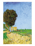 Alane Near Arles Wall Decal by Vincent van Gogh