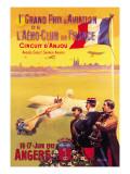 Grand Prix d'Aviation de l'Aero-Club de France Wall Decal