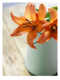 Orange Lilies in White Pail Wall Decal