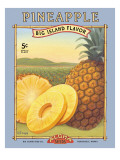Pineapple Muursticker van Kerne Erickson