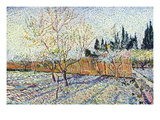 Orchard Wall Decal by Vincent van Gogh