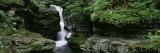 Panoramic View of a Waterfall, Ricketts Glen State Park, Pennsylvania, USA Wall Decal by  Panoramic Images