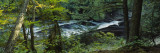 River Flowing through the Forest, Presque Isle River, Porcupine Mountains, Michigan, USA Wall Decal by  Panoramic Images
