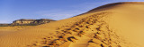 Sand Dunes in the Desert, Coral Pink Sand Dunes State Park, Utah, USA Wall Decal by  Panoramic Images