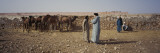 Four Men at a Camel Market, Morocco Wall Decal by  Panoramic Images