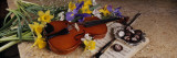 High Angle View of a Violin with Flowers Wall Decal by Panoramic Images