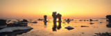 Silhouette of Rocks on the Beach, Faro, Gotland, Sweden Wall Decal by Panoramic Images