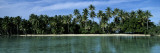 Palm Trees Along a Coast, Tahaa, French Polynesia Wall Decal by  Panoramic Images
