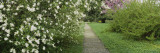 Path in a Park, Richmond, Virginia, USA Wall Decal by  Panoramic Images