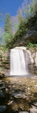 Waterfall from the Rocks, Pisgah National Forest, North Carolina, USA Wall Decal by  Panoramic Images
