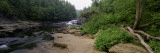 Stream of Water Flowing through a Forest, Swallow Falls State Park, Maryland, USA Wall Decal by  Panoramic Images
