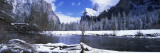 Flowing River in the Winter, Yosemite National Park, California, USA Wall Decal by  Panoramic Images