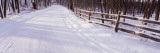 Snowcapped Road and Fence in the Forest, Grand Rapids, Michigan, USA Wall Decal by  Panoramic Images