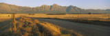 Road Running through a Farm, South Africa Wall Decal by  Panoramic Images