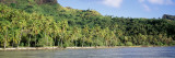 Tropical Coastline with Palm Trees, Bora Bora, French Polynesia Wall Decal by  Panoramic Images