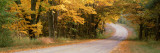 Country Road Passes through a Forest, Empire, Michigan, USA Wall Decal by  Panoramic Images