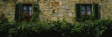 Flowers on a Window, Monteriggioni, Tuscany, Italy Wall Decal by  Panoramic Images
