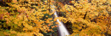 Horsetail Falls, Columbia River Gorge National Scenic Area, USA Wall Decal by  Panoramic Images