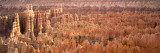 Aerial View of the Grand Canyon, Bryce Canyon National Park, Utah, USA Wall Decal by  Panoramic Images