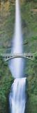 Bridge near a Waterfall, Multnomah Falls, Benson Bridge, Oregon, USA Wall Decal by  Panoramic Images