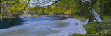 River Flowing through the Forest, Dalalven, Uppland, Sweden Wall Decal by  Panoramic Images