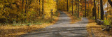Autumn Leaves on the Road, Connecticut, USA Wall Decal by  Panoramic Images