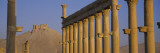 Great Colonnade, Palmyra, Syria Wall Decal by Panoramic Images