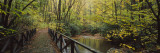Footbridge Over a Pond in a Forest, Cucumber Run, Ohiopyle State Park, Pennsylvania, USA Wallstickers af Panoramic Images,
