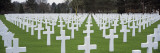 Rows of Tombstones in a Cemetery, American Cemetery, Normandy, France Wall Decal by  Panoramic Images