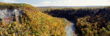 River Flowing through a Forest, Genesee River, Letchworth State Park, New York State, USA Wall Decal by  Panoramic Images
