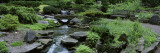 River Flowing Through a Forest, Inniswood Metro Gardens, Columbus, Ohio, USA Wall Decal by  Panoramic Images