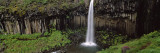 Waterfall in the Park, Svartifoss Waterfall, Skaftafell National Park, Iceland Wall Decal by  Panoramic Images
