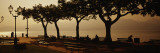 Benches in a Park, Torri del Benaco, Lake Garda, Italy Wall Decal by  Panoramic Images