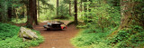 Picnic Table in the Forest, Salmon-Huckleberry Wilderness, Oregon, USA Wall Decal by  Panoramic Images