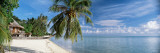 House on the Beach, Matira Beach, Bora Bora, French Polynesia Veggoverføringsbilde av Panoramic Images,