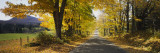 Trees on Both Sides of a Road, Danby, Vermont, USA Wall Decal by  Panoramic Images
